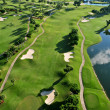 Aerial view of nice florida municipal golf course — ストック写真