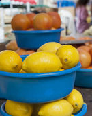 Lemons at the Saturday Market — Stock Photo