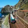 Manarola village and train station (Italy) — Stock Photo