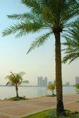 Doha Corniche — Stock Photo