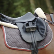 Saddle on a horse - Stock Photo