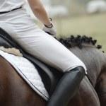 Woman on a horseback — Stock Photo