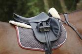 Saddle on a horse — Stock Photo