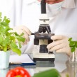 Stock Photo: Researcher with GMO vegetable in laboratory