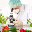 Stock Photo: Researcher with microscope with GMO vegetables in laborato