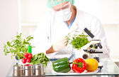 Researcher with GMO plants in the laboratory — Stock Photo