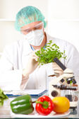 Researcher holding up a GMO vegetable in the laboratory — Stock Photo