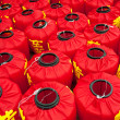 Chengdu, Sichuan Province, China - January 3: the traditional Chinese New Year Year of the Dragon, made ​​of red lanterns, shot in January 2012, Chengdu Park — Stock Photo