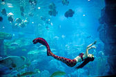 Underwater panorama — Stock Photo