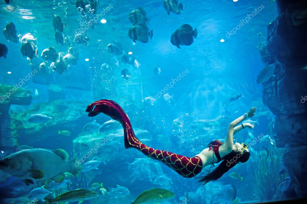 Underwater panorama with turtle, coral reef and fishes — Stock Photo #9727428