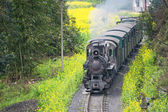 Jia Yang steam train, China — Stock Photo