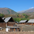 Xinjiang, China, autumn grasses and town - Stock Photo