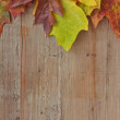 Colorful autumn leaves over wooden background — Stockfoto #9744291