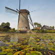 Historic Dutch windmill in Kinderdijk, Holland - Stock Photo