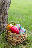 Easter eggs in basket — Stockfoto