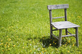 Old chair in meadow — Stock Photo
