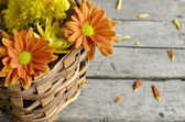 Basket flowers — Stock Photo