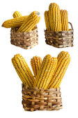 Corn basket — Stock Photo