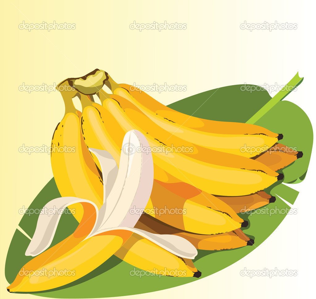 Illustration of Ripe Banana — Stock Vector #9780161