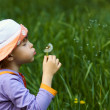 Girl blowing a dandelion — Stock Photo #9667815