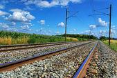 Railway — Stock Photo