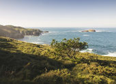Coastline on a sunny morning — Stockfoto