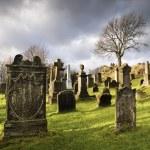 Cemetery with tombstones — Stock Photo #9724149