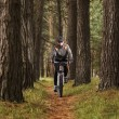 Stock Photo: Man practicing mountain biking in the forest