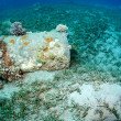 Strange rusty barrel found underwater in the sea — ストック写真