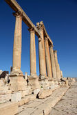 Beautiful perspective for the Roman Columns of Cardo Maximus in ancient Jerash city — Stock Photo