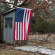 AmericOuthouse — Foto de stock #10350110
