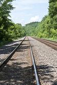 铁轨穿过树林 — 图库照片