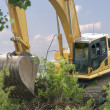 Heavy Equipment Strips Vegetation - Stock Photo
