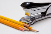 Stapler and Pencils — Stock Photo
