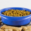 Dog Food — Stock Photo #10174282