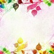 Multicolored leaves floral vintage - Stock Photo