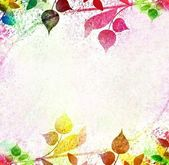 Multicolored leaves floral vintage — 图库照片