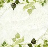 Green leaves floral vintage — Foto Stock