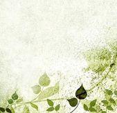 Romantik yeşil yaprakları arka plan — Stok fotoğraf