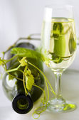 White wine in the glass — Stock Photo
