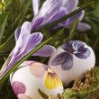 Painted eggs and crocus on Easter — Stock Photo #9771374