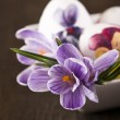 Stock Photo: Painted eggs and crocus on Easter
