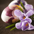 图库照片: Painted eggs and crocus on Easter