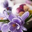 Painted eggs and crocus on Easter - closeup — Stock Photo