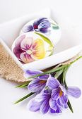 Painted eggs and crocus on Easter — Stockfoto