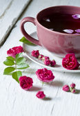 Briar`s tea (tea with rose hips) — Stockfoto