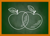 Drawing of apples on blackboard — Stock Vector