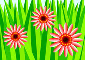 Detail of summer meadow — Vector de stock