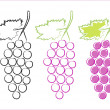 Grape icons on white background — Image vectorielle