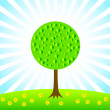 Spring tree on green meadow — Stock Vector #9903188